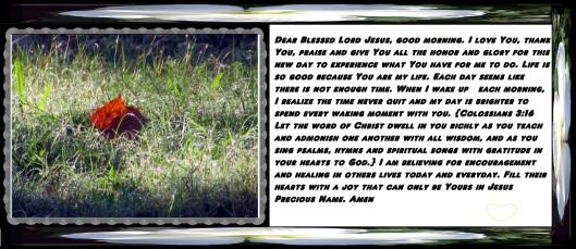 © Photo Artist Susan Ruth Robertson 090025006100 054 - Copy.JPG
